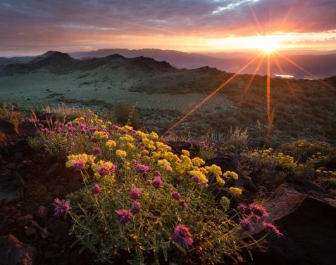 My_Public_Lands_Roadtrip-_Nevada_Views_from_Slinkard_Wilderness_Study_Area_(19396610458)